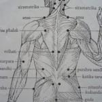 marmové body